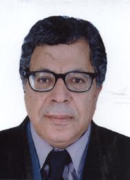 mohamed-bahdoud